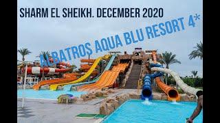 Отзыв об отеле Albatros Aqua Blu 4 в декабре 2020 года Египет Шарм Эль Шейх