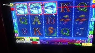 TONS of Freespins 200!! winning Streak 2€ Bet Dolphins Pearl