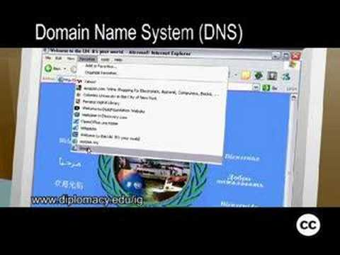 Internet Governance - Domain Name System (DNS)