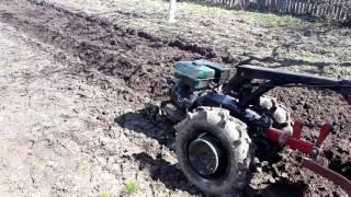 Посадка картошки под мотоблок Беларусь 09 н