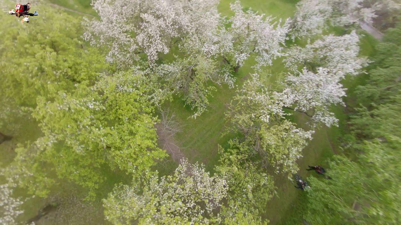Яблоневый сад. FPV Freestyle картинки