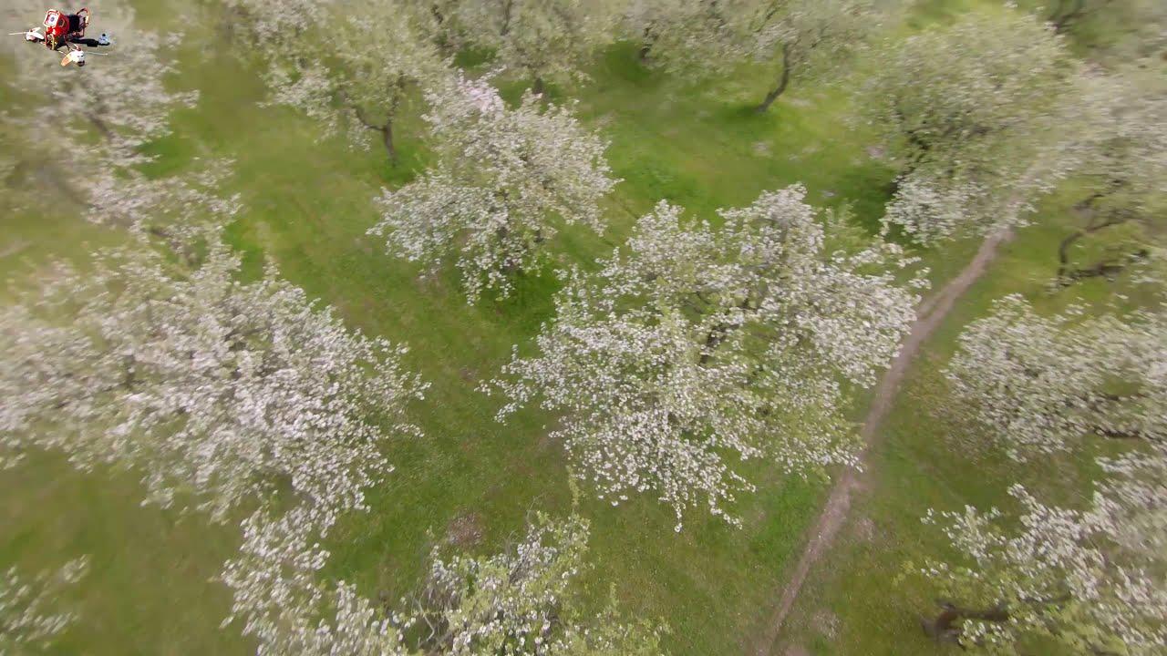 Яблоневый сад. FPV Freestyle фотки