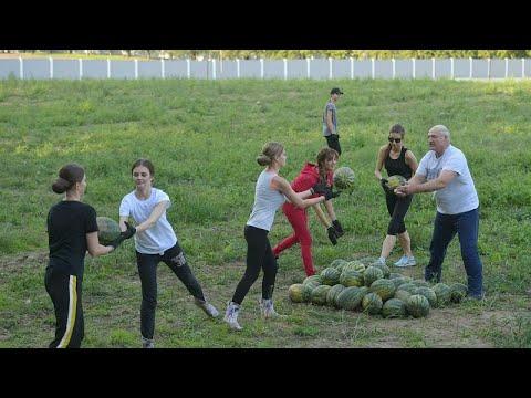 شاهد: رئيس بيلاروسيا ومساعدته من النساء في حصاد البطيخ
