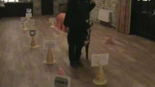 Rally Obedience. Level Three Training Run.  April, 2010