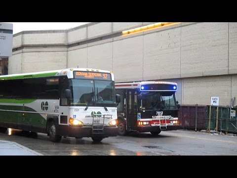 Buses in Toronto, ON (Volume One)