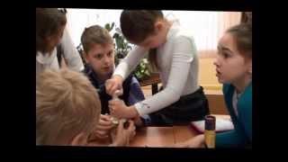 Урок окружающего мира в 3м классе С.Н. Букина