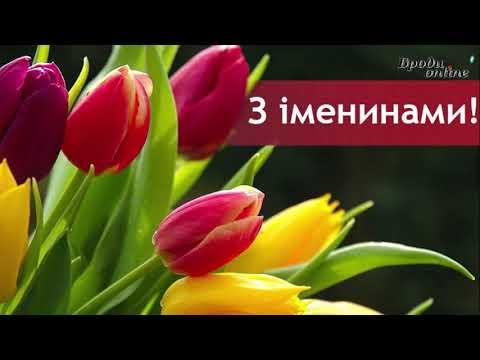 Телеканал Броди online: Вітання з іменинами Світлани (ТК