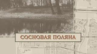 Фото Малые родины большого Петербурга. Сосновая поляна