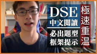 【考前定心丸】DSE中文卷一閱讀:拆解老是常出現的八種題型