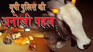 Police Stick Radium Strip On Stray Cow To Control Road Accident | Talented India Video