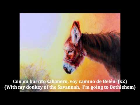 Mi Burrito Sabanero (Spanish lyrics w/ English translation)
