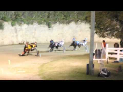 #2 Harness Pony Racing Bermuda January 7 2012