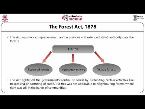 Forest Policies and Tribes (ANT)