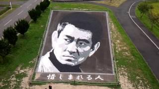 田んぼアートの横にありました。