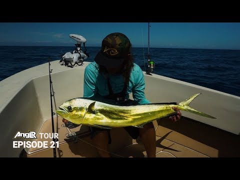 Tail Dancing Mahi Mahi Offshore Fishing New Smyrna Beach (10 New Species!?)