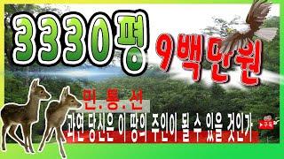 [부동산추천] 강원도 철원 3330평 토지...과연당신…