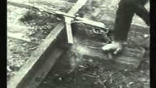 Великая Отечественная Война на Кубани