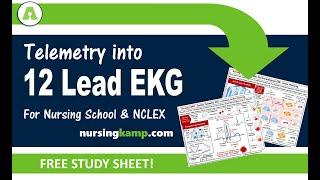 12 Lead and Telemetry EKG ECG Interpretation Nurses Nursing KAMP NCLEX Prep 2019