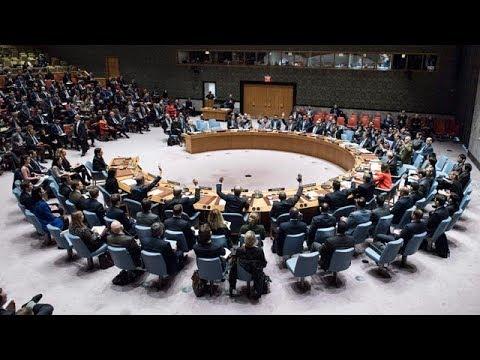 UN vote: Trump