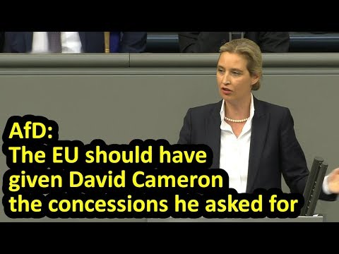 AfD co-leader speech on Brexit in Bundestag, Alice Weidel, English subtitles (March 2019)