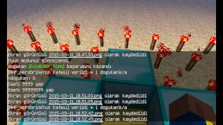Minecraft HeroBrayn