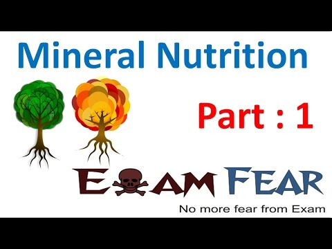 Biology Mineral Nutrition part 1 (Introduction) CBSE class 11 XI
