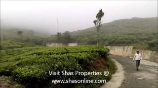 Land for sale Kothacombai Kotagiri,Ooty
