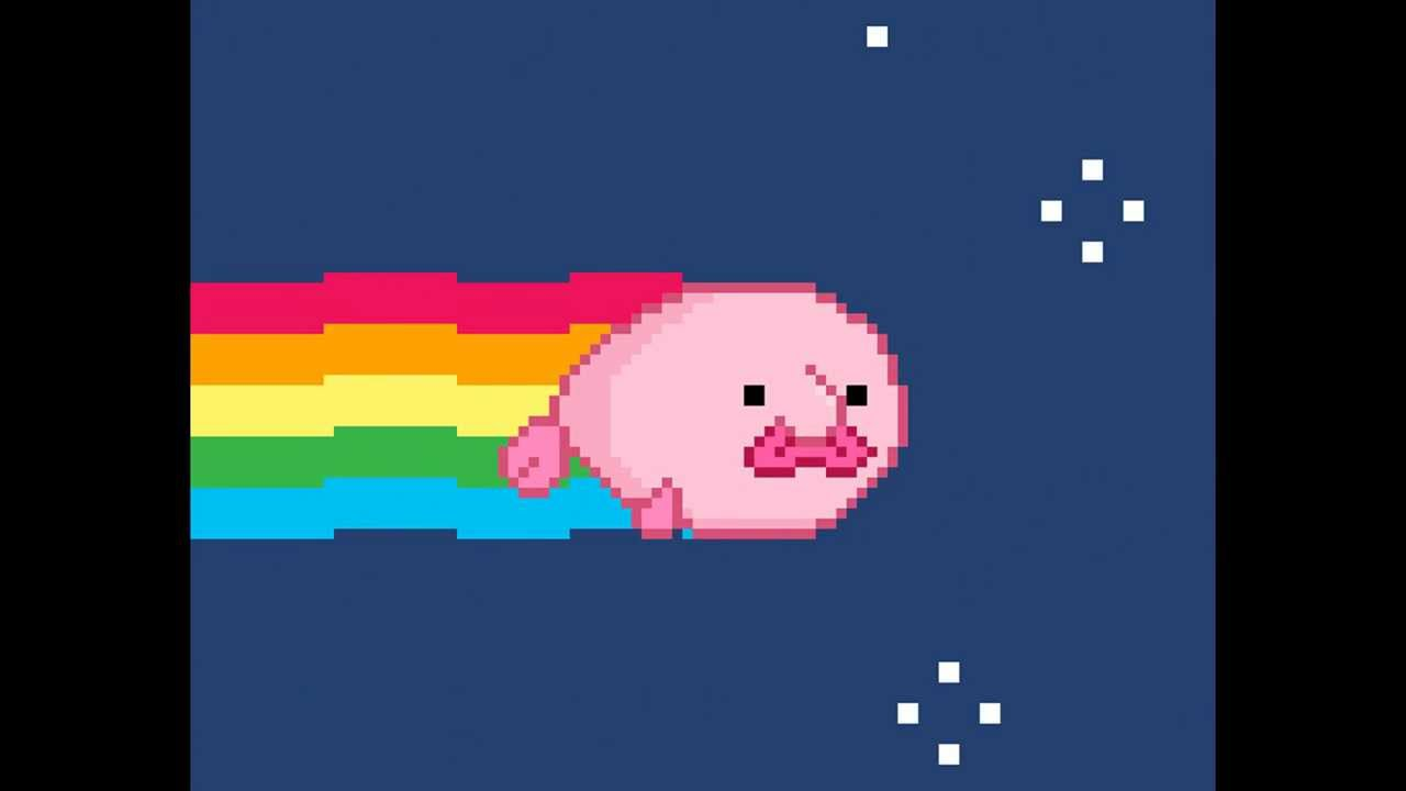 Blob Fish Nyan Cat