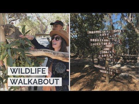 Australia Walkabout Wildlife Park 🦘🐨 🐕  NSW August 2019 🇦🇺 Travel Vlog