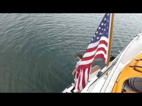 Swimming in the Gulf of Alaska