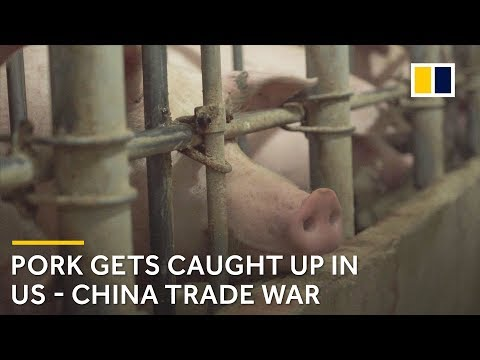 Trade war fears for Chinese pork