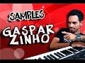 SAMPLES GASPARZINHO | YAMAHA S750/950