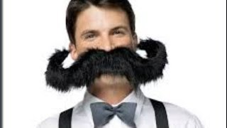 Moustache and Beard Accessories