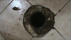 How to replace a toilet flange on a concrete floor