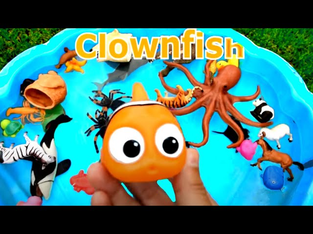 Learn Colors With Wild Animals and Sharks in Blue Water Tub Toys For Kids