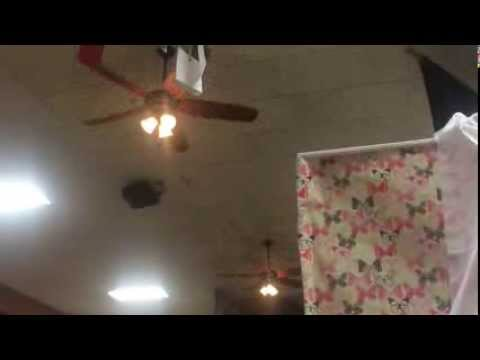 4 Hampton Bay Altura ceiling fans at an arts and crafts gallery (on)