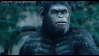 Война планеты обезьян 2017