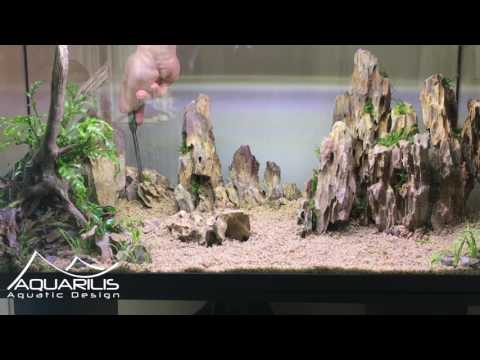 Comment faire un aquarium en aquascaping : Dragon Scape
