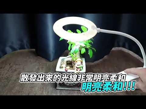 【免運 LED檯燈 書桌燈 夾燈 床頭燈】夾/站兩用  工作燈 小夜燈檯燈 可彎曲蛇管 USB檯燈 台燈 夜燈