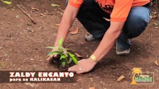 BAGONG MAUBAN (PROJECT RATSADA)