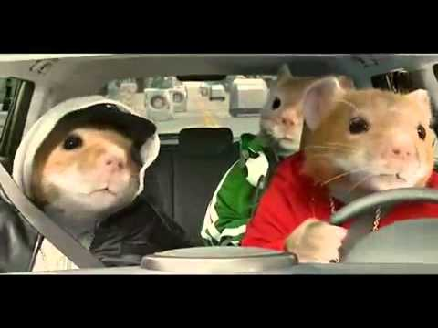 Black Kia Soul >> 2012 Kia Soul Hamster Commercial Black Sheep Kia Hamsters Video -.mp4 - YouTube