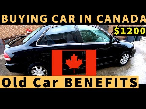 Punjabi Students Buying THIS CAR In $1200 🇨🇦 ONLY