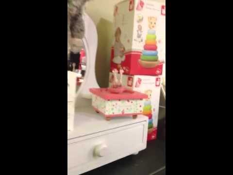 Sophie La Girafe Spinning Music Box
