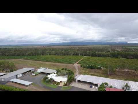 Golden Drop Winery Mareeba Queensland