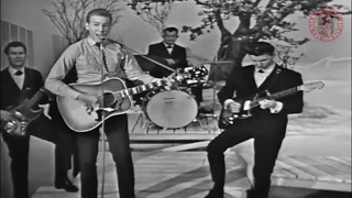 Hank Williams Jr Hey Good Lookin 1964
