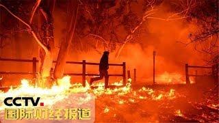 《国际财经报道》 美国加州山火持续肆虐 旅游胜地马里布成空城 20181112 | CCTV财经