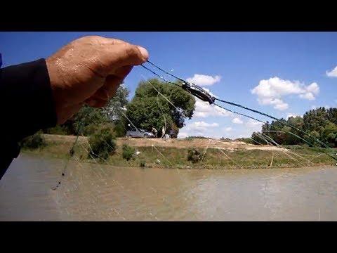 Из реки Терек извлечено 100 осетровых сетей