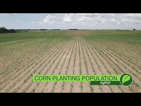 Corn Planting Population #1023 (Air Date 11-12-17)