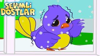 Mini mini bir kuş  Sevimli Dostlar bebek şarkıları dinle   sevimlidostlarbebekşarkıları