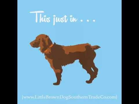 Little Brown Dog Southern Trade Co. New Additions